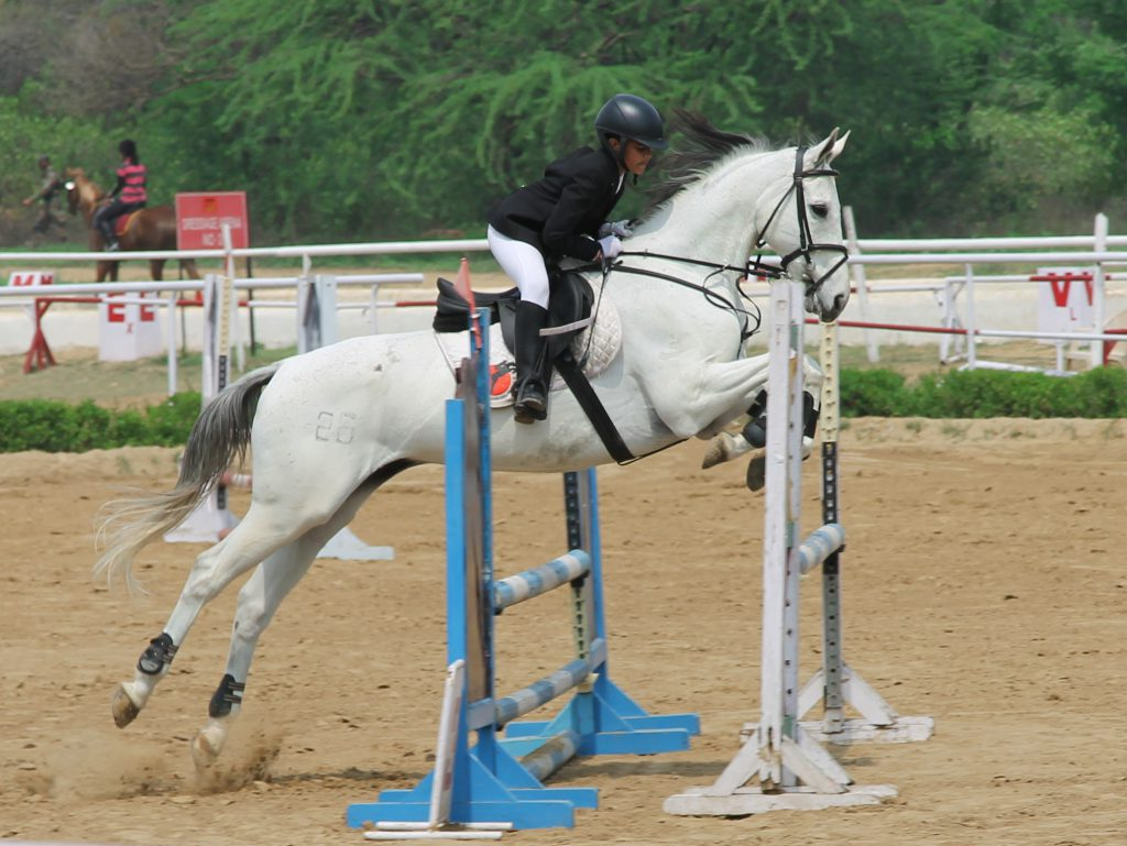 how to become a professional equestrian rider