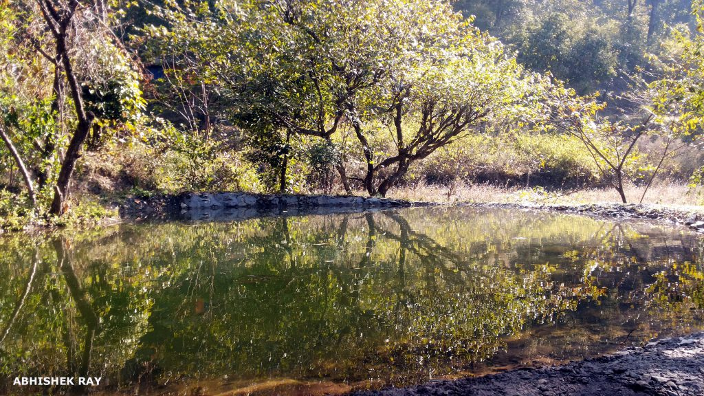 Man-made water body developed at the Sitabani Wildlife Reserve