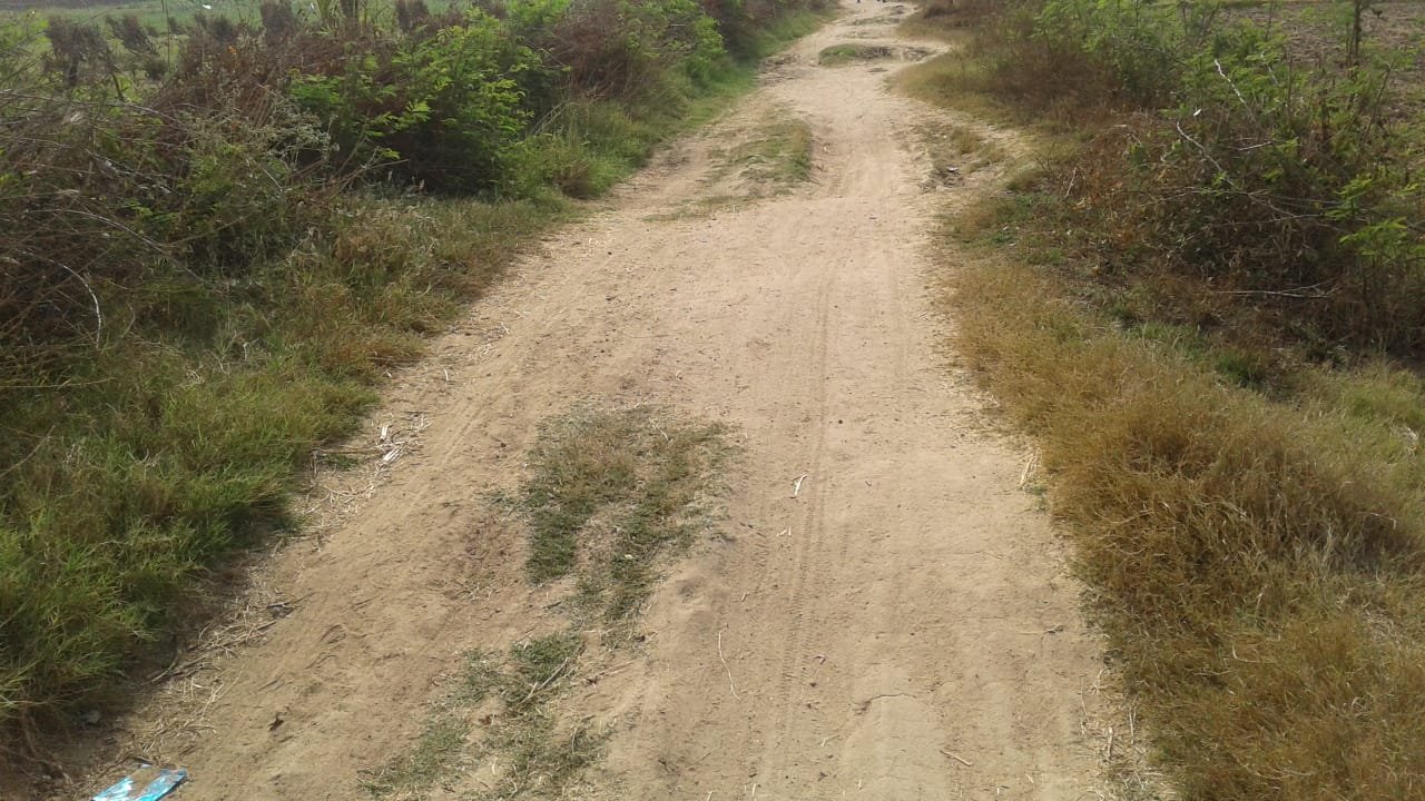 The dilapidated road that Priya, a Jagrik from Audacious Dreams Foundation, talked about
