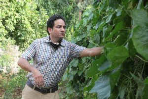 Rohit Mehra : Green Man of India