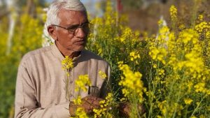 With his unique water-saving technique called dryland agroforestry, Sundram Verma has planted 55,000 trees.