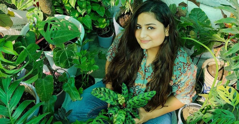 25-year-old Sakshi Bharadwaj from Bhopal has created an urban garden 'Jungle Vase' behind her home consisting of around 4000 plants, comprising 450 species. A lot of them being extremely rare.
